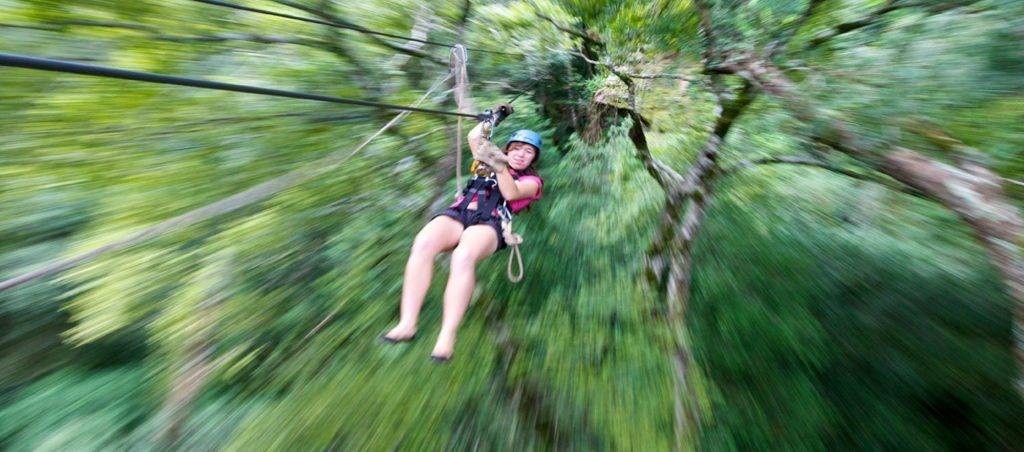 Drakenberg canopy tours