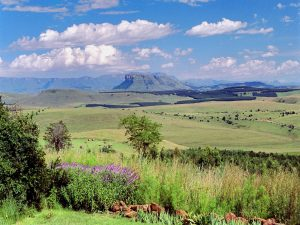by region - 5 - Experience the Drakensberg view 1