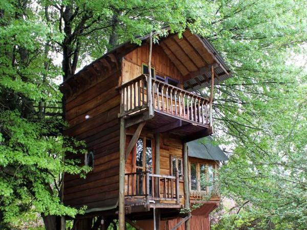 Tree house accommodation natal midlands