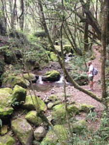 Hiking Trails - 4 - Experience the Drakensberg 4f3d5b216e5f07ce749e250e428423d31