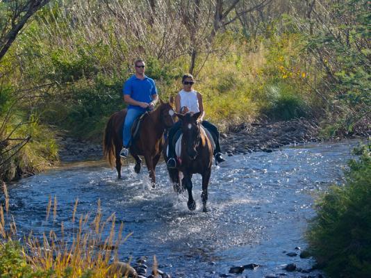 sani pass horse back trails
