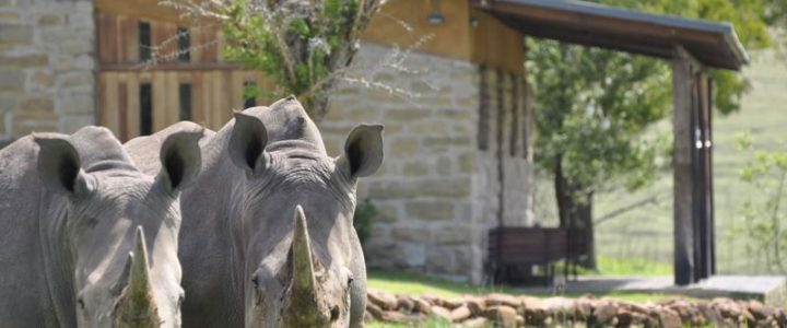 zulu waters - your own private game reserve