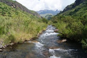 Injisuthi Camp - 6 - Experience the Drakensberg stream adjacent to camp1 1 Accommodation, Bushman Paintings, Drakensberg Caves