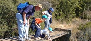 by category - 13 - Experience the Drakensberg day walk1