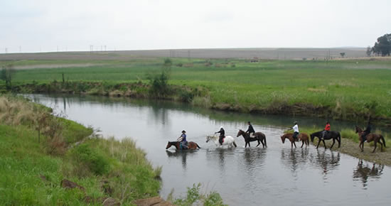 Drakensberg horse riding and horse trails
